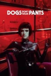 Köpekler Pantolon Giymez izle
