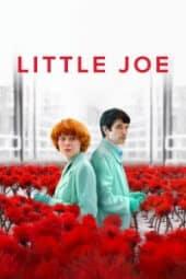Küçük Joe izle