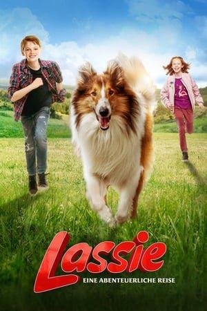 Lassie Eve Dön izle