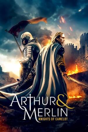 Arthur & Merlin: Knights of Camelot izle